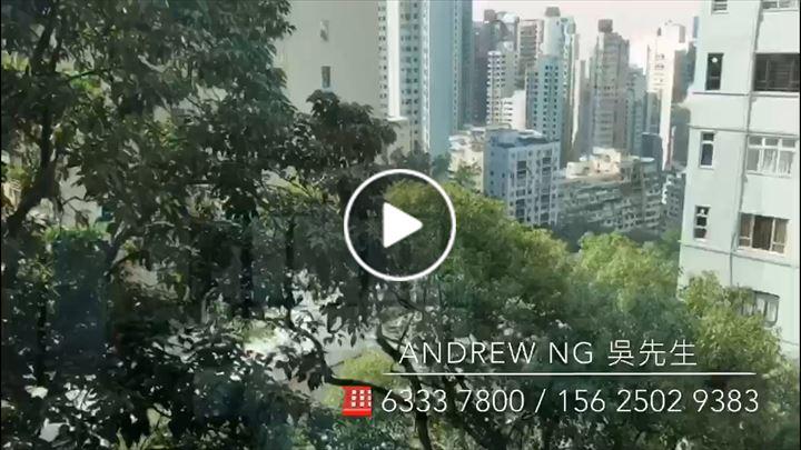 Andrew Ng 吳業雄