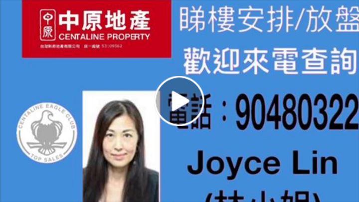 Joyce Lin 林林