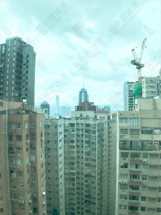 窗外景觀 - 由主人房