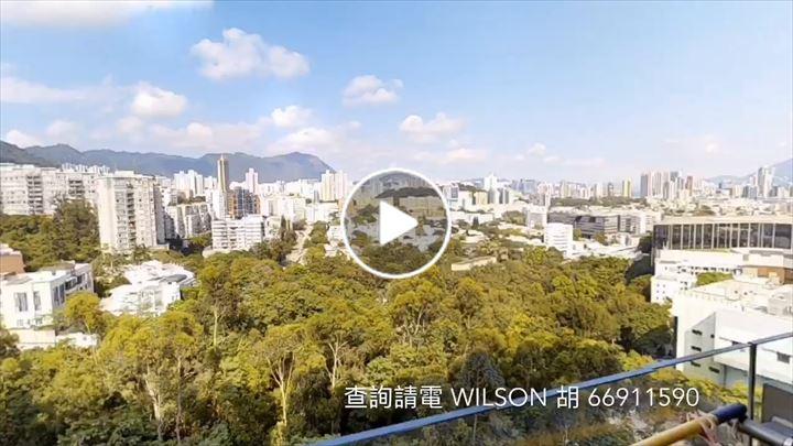Wilson Wu 胡耀年