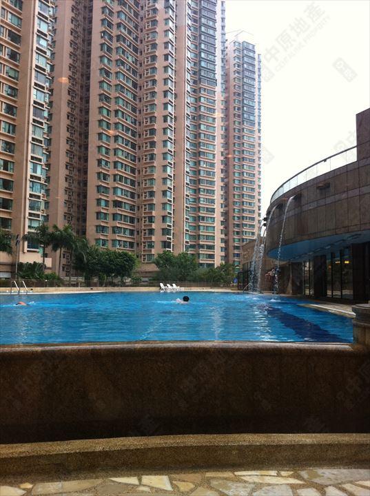 会所 / 设施 - 泳池