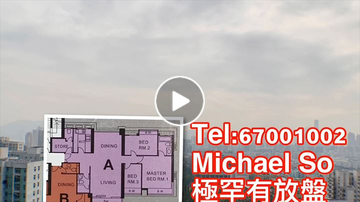 Michael So 蘇冠謙